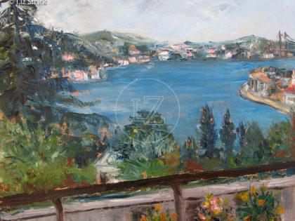 Bosphorus view 8