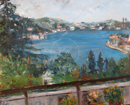 Bosphorus view 8