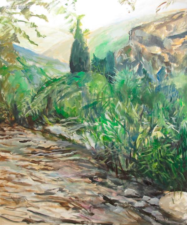 Litani River 2