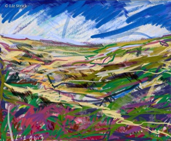 North Yorkshire Moors 1