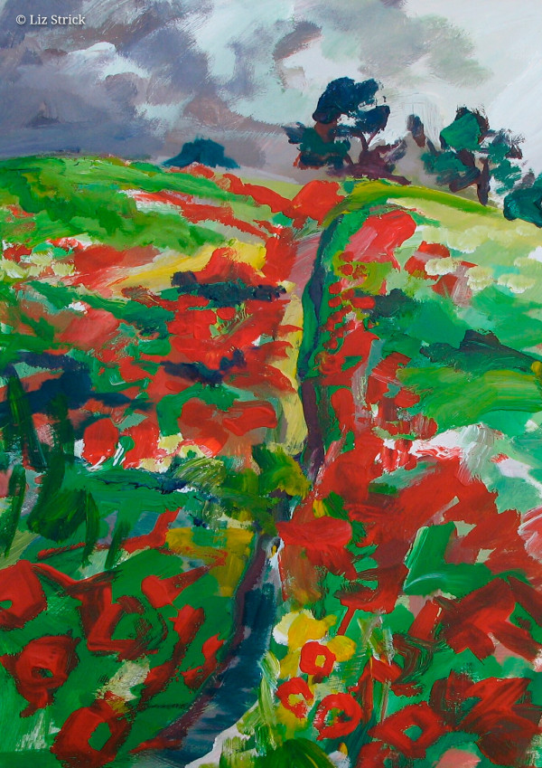 Poppyfield in Chiltern Hills 5